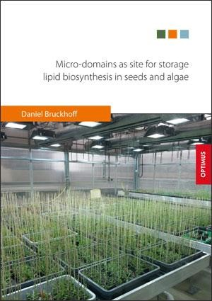Micro-domains as site for storage lipid biosynthesis in seeds and algae